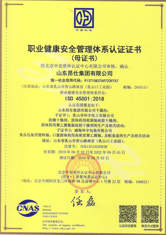bob软件苹果版集团 职业健康认证